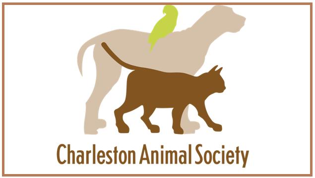 Charleston Animal Society_96140