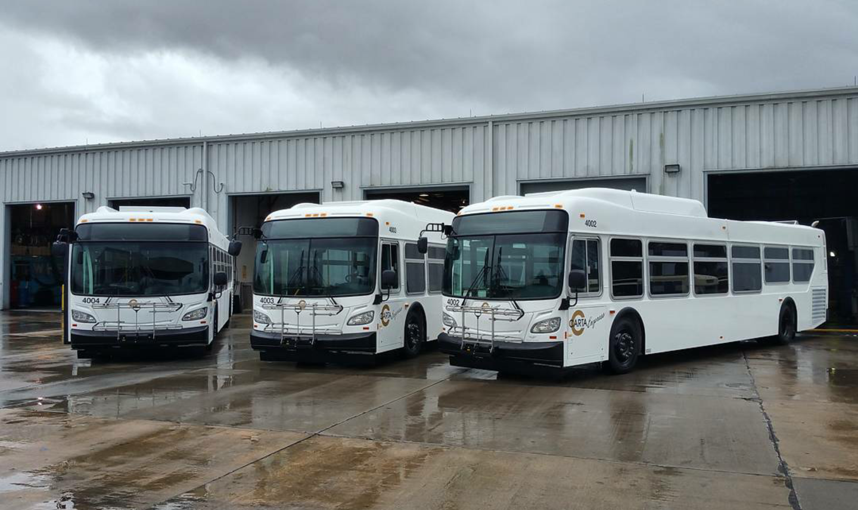 CARTA Buses_105261