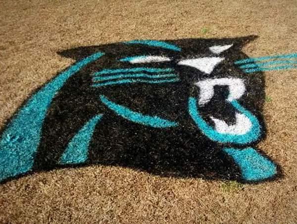 Carolina Panthers Yard Art_119625