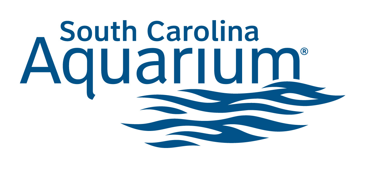WCBD-South Carolina Aquarium_211782