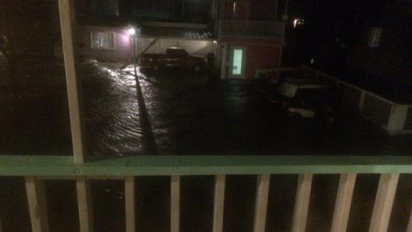 Hermine Florida flooding_223004