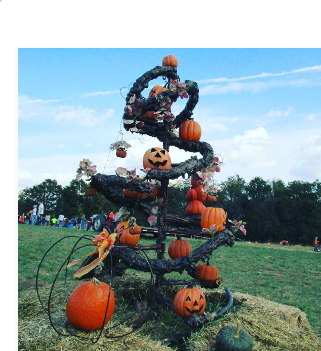 halloween-tree_246355