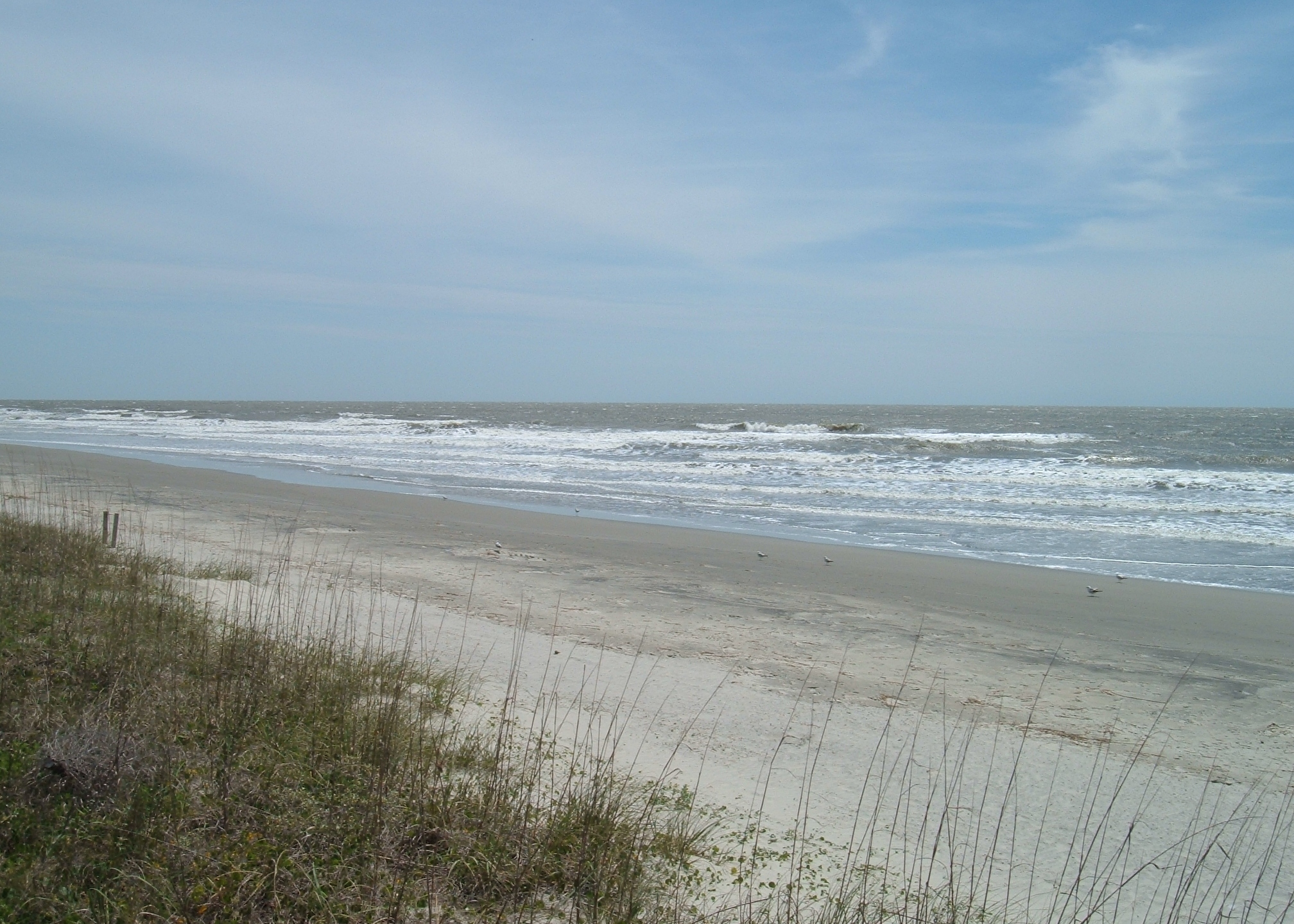 WCBD-Isle of Palms_221637