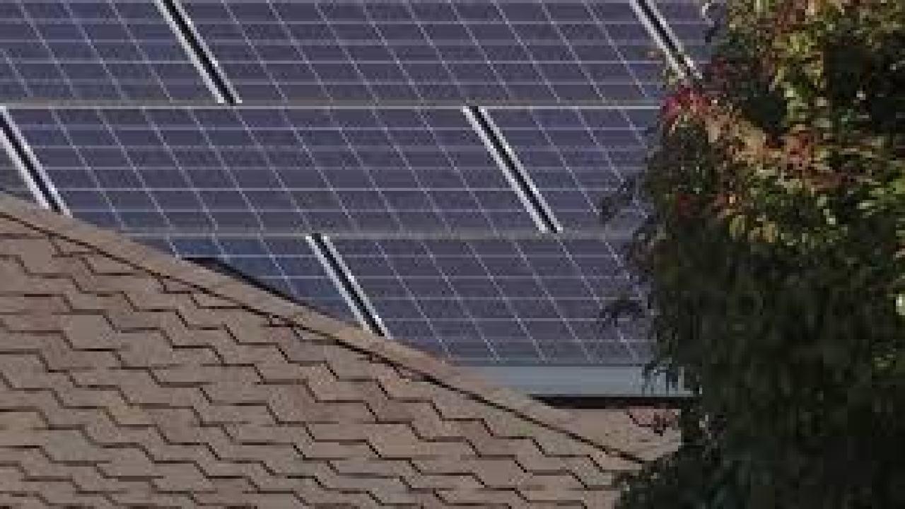 New solar farm opens in Kingstree