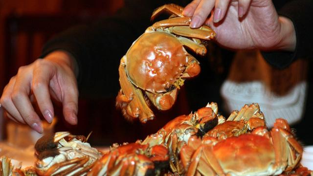 crabs_1531747296510_48744647_ver1.0_640_360_1531751304669_48750531_ver1.0_640_360_1531752905292.jpg