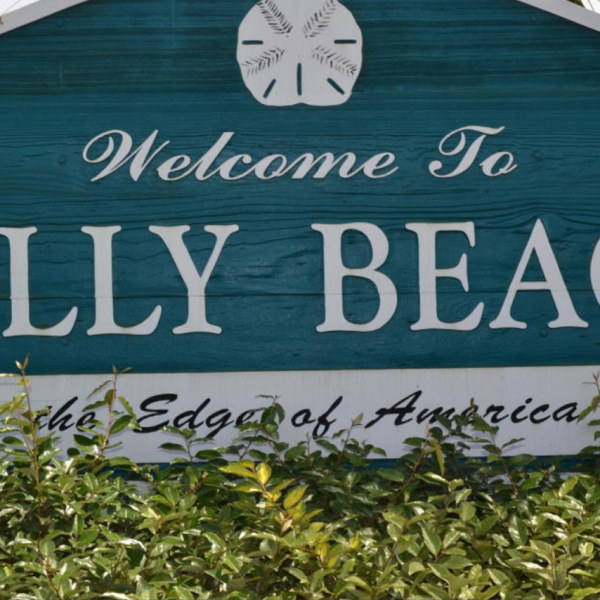 folly beach_398284
