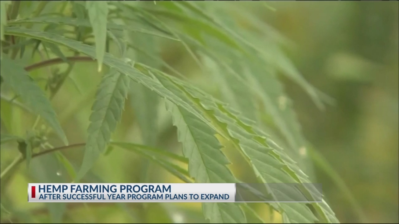 Hemp processing facility in Dorchester County to expand