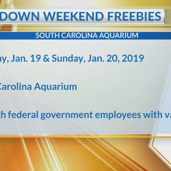 SC Aquarium offers free admission for federal workers