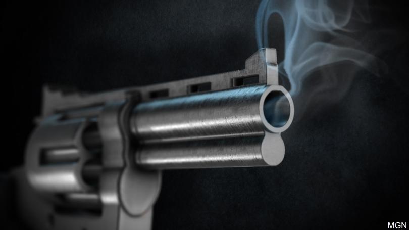 smokinggun_1549293887594.jpg