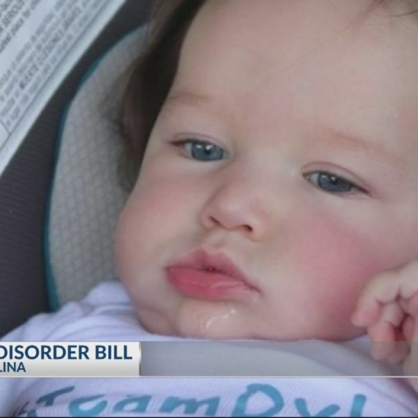 SC Lawmakers on Dylann's Law